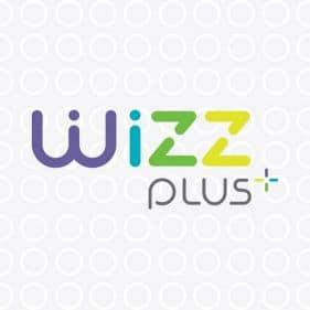 Wizz pago en linea