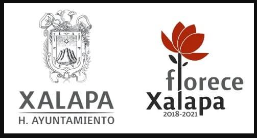 Pagar predial de Xalapa