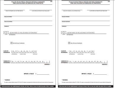 Formato de pago de pasaporte
